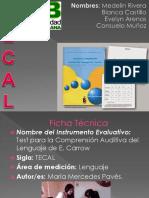 Presentación TECAL23