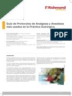 m737 Guiapractica Analgesia v5