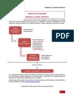 Guia de Actividades Individuo Medioambiente-2