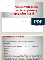 Nuevas Variedades Importancia-patron-propagacion Clonal Palto