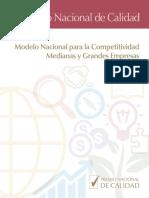 MNC Medianas y Grandes Empresas (1)