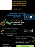 presentacion2levadurayhongo-140613113842-phpapp01.pptx