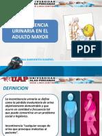 Incontinencia Urinaria Ppt 2016
