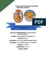 PRACTICA 2 TRATAMIENTOS.docx