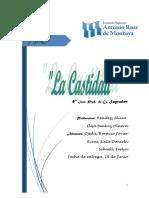 CASTIDAD (1).docx