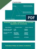 Clasificación de Herbicidas (1)