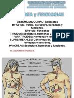 12° Clase SISTEMA ENDOCRINO.pptx