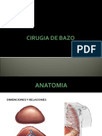 Cirugia de Bazo