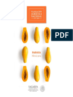 Papaya Potencial Papaya