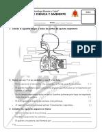 Examen Mensual de Ciencia y Ambiente