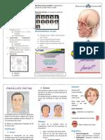 Triptico Paralisi Facial