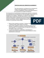 Mecanismos Fisiopatologicos de Tiroiditis de Hashimoto-Inmunologia