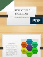 Modelo de estructura familiar.pptx