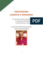 Kenchen Thrangu Rimpoche - Meditazione Shamata e Vipassana