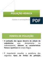 POLUIÇÃO HÍDRICA fontes de poluição.pptx
