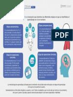 Infografia Tipo de Contenido AVA.pdf