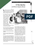 articulo 19 (1).pdf