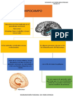 HIPOTALAMOHIPOCAMPOEMOCIONES (1) (1)