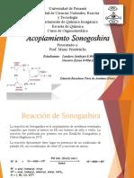 acoplamiento sonogoshira.pptx