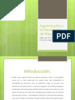 Agroindustria y La Prevención de Riesgos