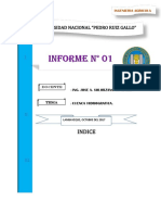 Informe de Hidrologia Analisis de Una Cuenca