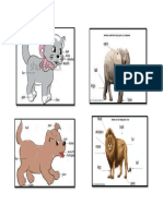 Animals Parts