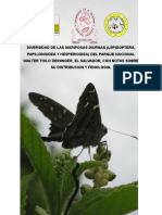 27522101-Diversidada-de-Mariposas-El-Salvador-Parque-Walter-Thilo-Deinninger.doc