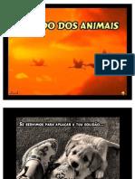 Pedido Dos Animais