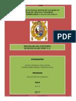 Petroperu- Programa Auditoria- Grupo 10