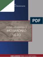 Patrimonio Neto.pdf