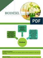 Biodiesel Parte 2