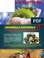 DESARROLLO SOSTENIBLE - 2017 (2).pptx