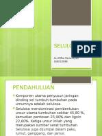 II.TUGAS DR MINI SELULOSA.pptx