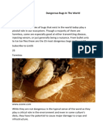 Dangerous Insects in the World