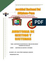270730373 Auditoria de Gestion en El Area de Recursos Humanos de Essalud Docx