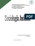 Ensayo Sobre Sociologia Juridica