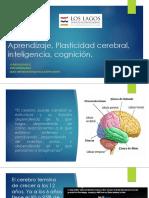 Aprendizaje, inteligencia, cognición.pptx