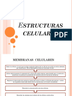 Estructuras celulares.pptx