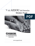 AEIOU penal y procesal penal.pdf