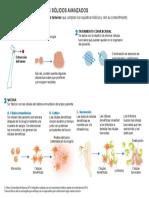 tumores-solidos-avanzados