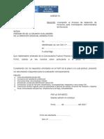Anexo Proceso CAS 2017