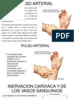Pulso Arterial Cuidados