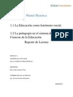 Pedagogia Como Fenómeno Social