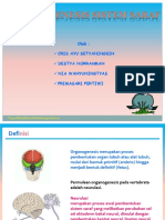 Organogenesis sistem saraf