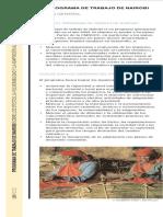 nwpleaflet_0_es.pdf