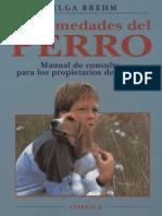 Animales - Enfermedades Del Perro