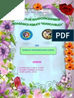 MONOGRAFIA DE AUSBEL.docx