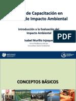 1_Introducción a La Evaluación Ambiental-IMurillo (1) - Copia