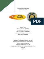 Penyuluhan ANC.docx