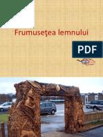 FRUMUSETEA LEMNULUI